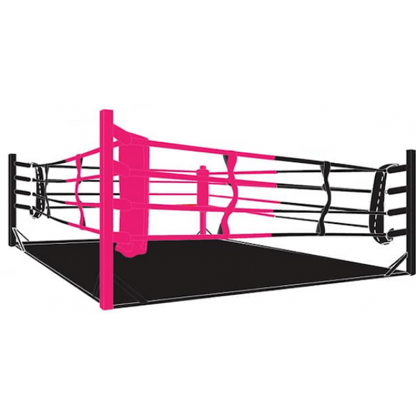 Boxing ring, Floor ring
